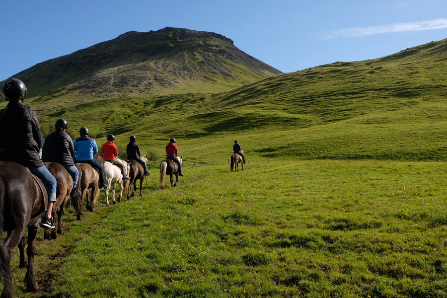Chasing Northern Lights Iceland, Corporate Expedition - Riding horses in the green mountains