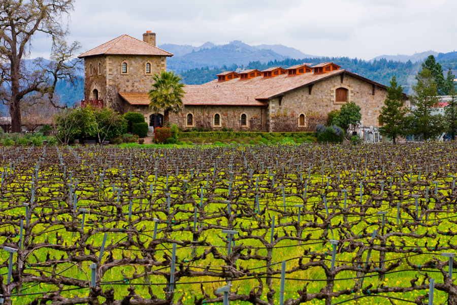 Food and Wine in Napa Valley - Typical winery in Napa Valley