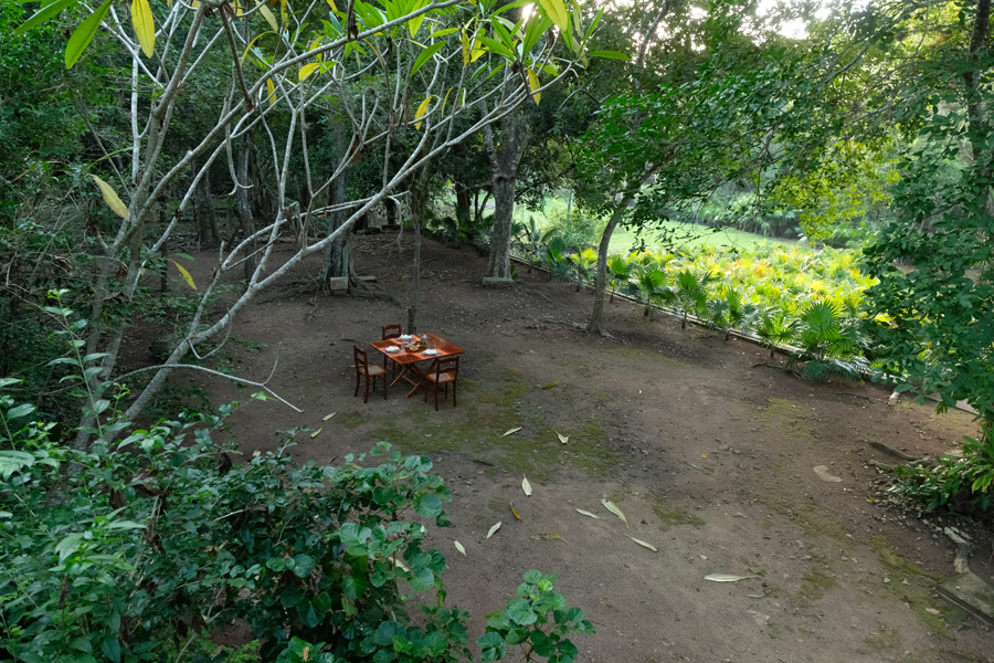 Nat Geo Expeditions Descubre Secretos Mayas - Table in the woods