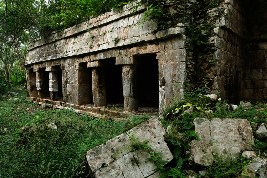 Nat Geo Expeditions Descubre Secretos Mayas - Mayan ruins in the woods 2