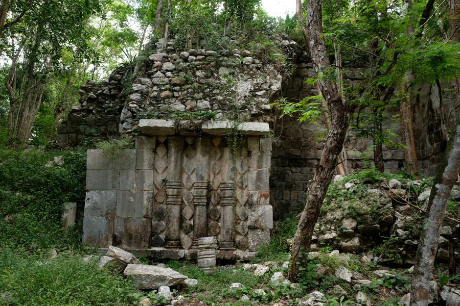 Nat Geo Expeditions Descubre Secretos Mayas - Mayan ruins in the woods