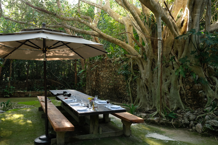 Nat Geo Expeditions Descubre Secretos Mayas - Lunch in the woods