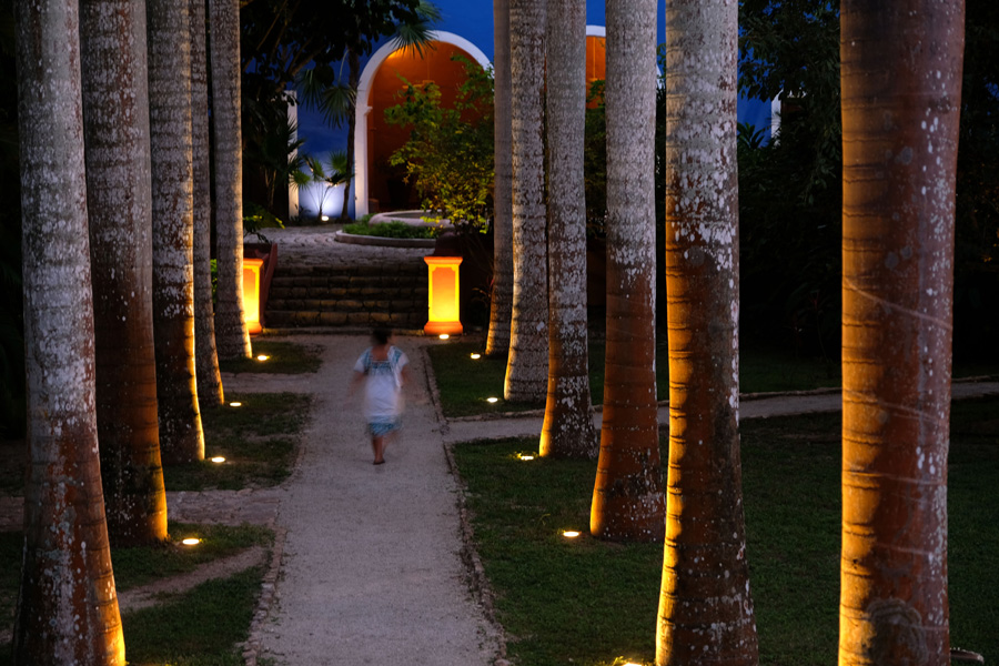 Nat Geo Expeditions Descubre Secretos Mayas - Walking at night through palm trees