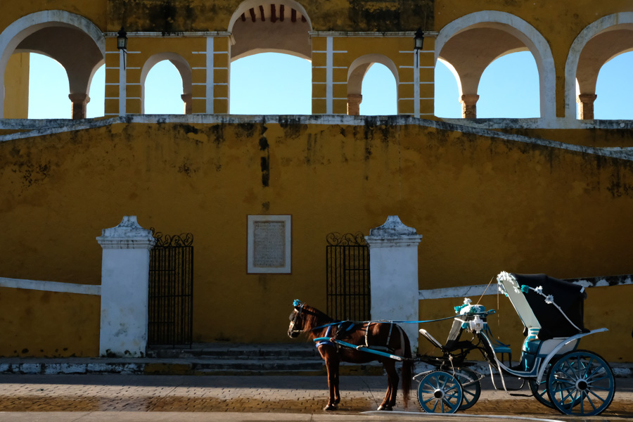 Nat Geo Expeditions Descubre Secretos Mayas - Horse and a carriage