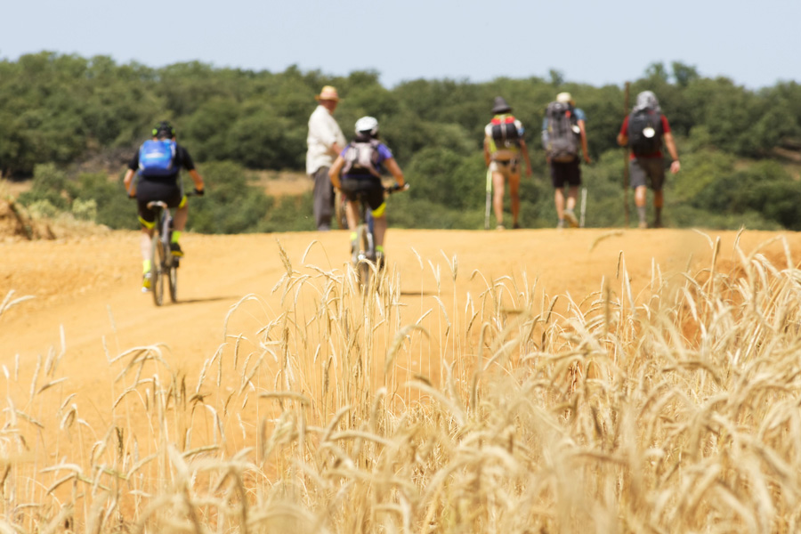 The Way of St James Food Wine and History on the Pilgrims Path - Pilgrims and bikers
