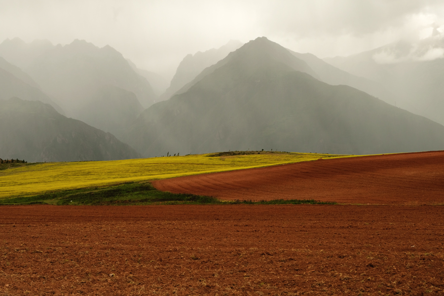 where we have gone Landscape